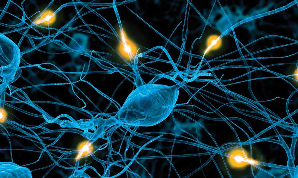 بیماری های تحلیل برنده عصبی