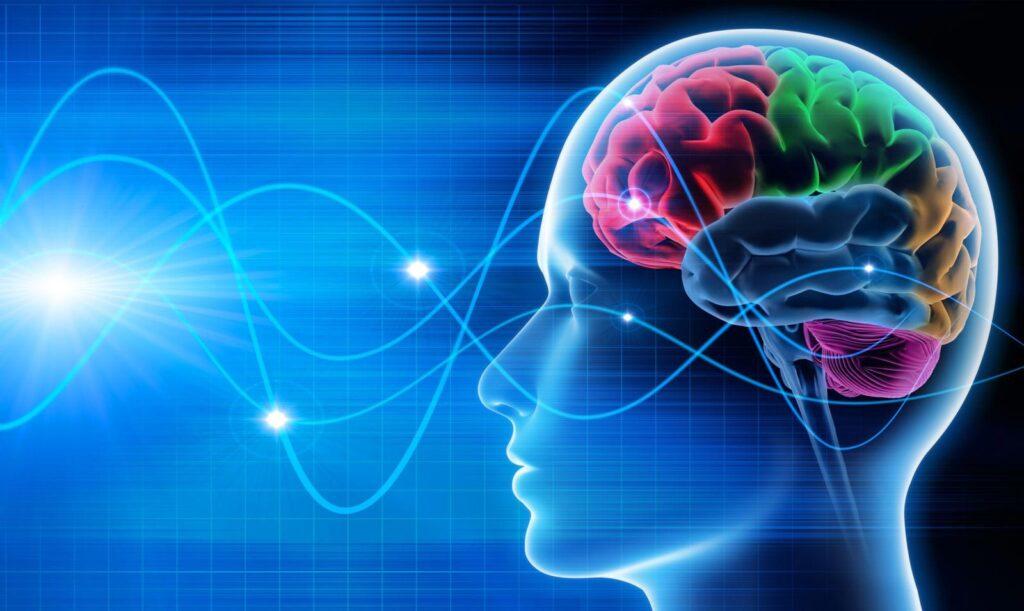 اختلالات مغزی و ذهنی
