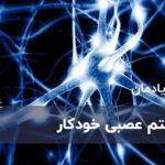 سیستم عصبی خودکار چیست؟