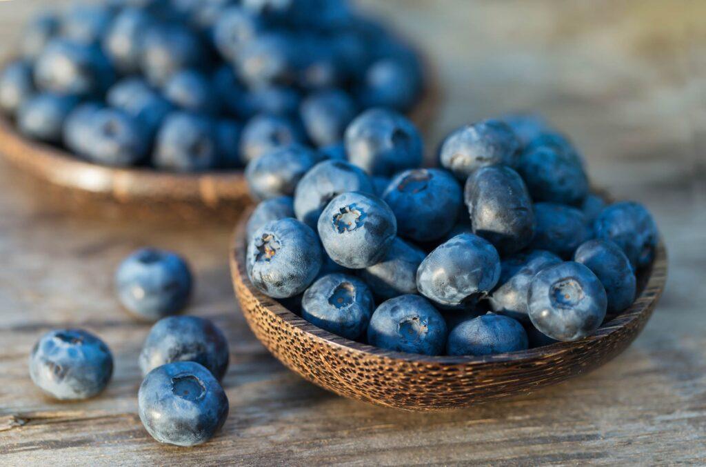 توت برای حفظ سلامت مثانه