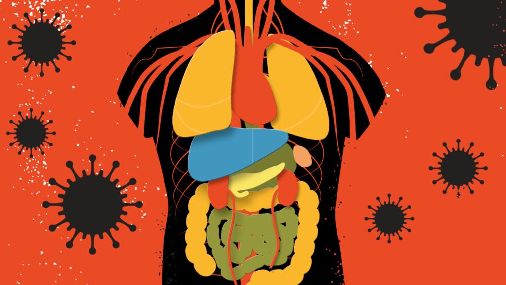 التهاب ناشی از ویروس بر عملکرد قلب تاثیر می گذارد